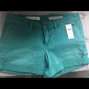 Anthropologie pilcro brand shorts
